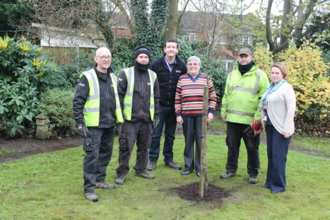 Members of the GreenTeam help plant a tree for a tenant